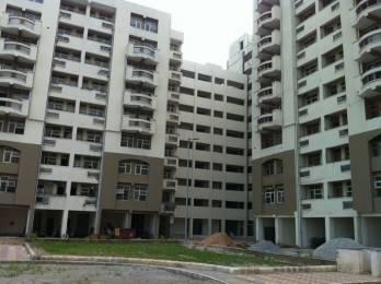 1800 sqft, 3 bhk Apartment in DDA Rohini Heights Sector-29 Rohini, Delhi at Rs. 1.1000 Cr