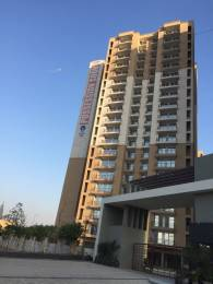 950 sqft, 2 bhk Apartment in Builder Project Sector-51 Noida, Noida at Rs. 38.0000 Lacs