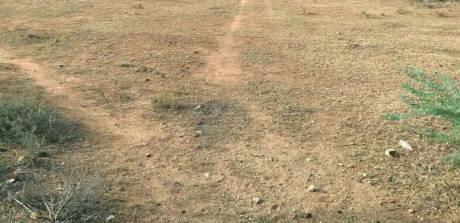 2484 sqft, Plot in Builder commercial land on rainbow road model town jalandhar Rainbow Road, Jalandhar at Rs. 5.4000 Cr
