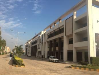 650 sqft, 1 bhk Apartment in APS Highland Park Bhabat, Zirakpur at Rs. 22.9000 Lacs