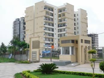 1650 sqft, 3 bhk Apartment in APS Highland Park Bhabat, Zirakpur at Rs. 53.9000 Lacs