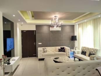 2975 sqft, 5 bhk Apartment in Barnala Green Lotus Avenue Patiala Highway, Zirakpur at Rs. 2.0000 Cr