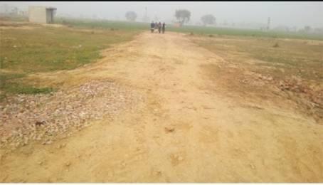 900 sqft, Plot in Builder 100 sq yard residential freehold plots in farridabad Manjhawali Road, Faridabad at Rs. 7.5000 Lacs