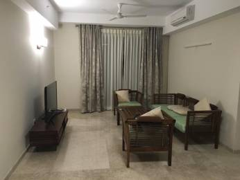 1971 sqft, 3 bhk Apartment in DLF Commanders Court Egmore, Chennai at Rs. 1.1000 Lacs