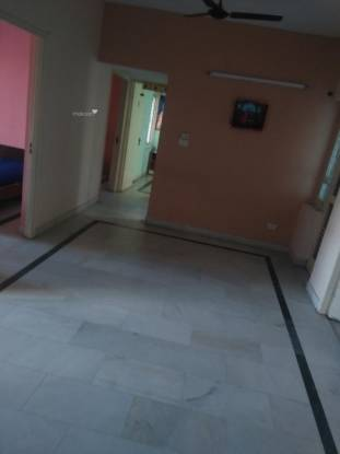 1350 sqft, 3 bhk Apartment in Eldeco Golf View Apartments Omega, Greater Noida at Rs. 11500