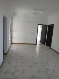 1435 sqft, 3 bhk Apartment in SDS NRI Residency Omega, Greater Noida at Rs. 12000