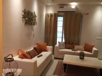 1050 sqft, 2 bhk Apartment in Builder Shree group Greater noida, Noida at Rs. 33.0000 Lacs