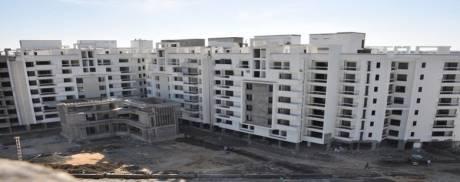 800 sqft, 1 bhk Apartment in Shri Balaji Swastik Grand Jatkhedi, Bhopal at Rs. 13.5000 Lacs