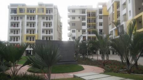 1100 sqft, 3 bhk Apartment in Builder sev Katara Hills, Bhopal at Rs. 21.0000 Lacs