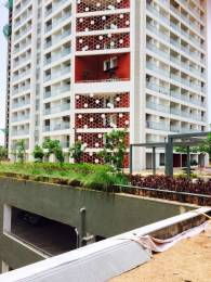 1570 sqft, 3 bhk Apartment in Northernsky City Kankanady, Mangalore at Rs. 86.9180 Lacs
