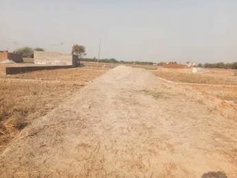 450 sqft, Plot in Builder Project Ballabgarh, Faridabad at Rs. 2.5000 Lacs