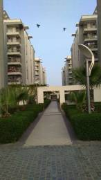 1202 sqft, 3 bhk Apartment in Mahima Mahima Iris Ram Nagar, Jaipur at Rs. 20000