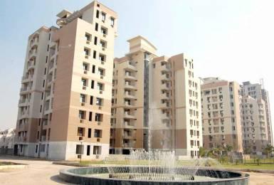 1480 sqft, 3 bhk Apartment in Samiah Vrinda City Phi, Greater Noida at Rs. 10000