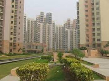 1250 sqft, 2 bhk Apartment in Samiah Vrinda City Phi, Greater Noida at Rs. 8000