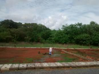 2497 sqft, Plot in Builder plots for sale Zuarinagar, Goa at Rs. 37.1200 Lacs
