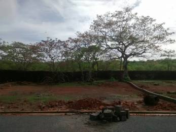 5253 sqft, Plot in Builder plots for sale at south goa Zuarinagar, Goa at Rs. 78.0800 Lacs