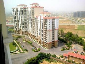 2364 sqft, 4 bhk Apartment in DLF New Town Heights Sector 90, Gurgaon at Rs. 18000