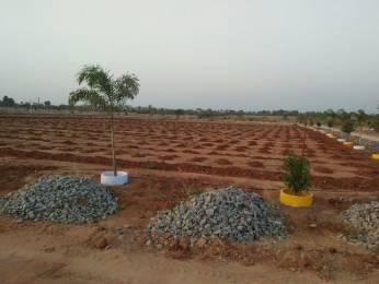 2205 sqft, Plot in Mudra Resorts And Farm Land Gundrampalli, Hyderabad at Rs. 5.3876 Lacs
