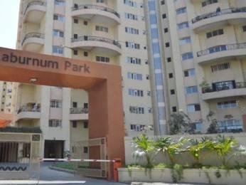 2500 sqft, 4 bhk Apartment in Magarpatta Laburnum Park Hadapsar, Pune at Rs. 42000