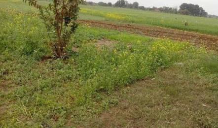 5155 sqft, Plot in Builder Project Damoh Road, Jabalpur at Rs. 6.1200 Cr