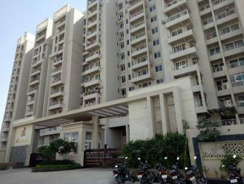 1310 sqft, 2 bhk Apartment in Vardhman Silver Crown Lalarpura, Jaipur at Rs. 12000