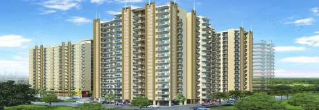 1100 sqft, 3 bhk Apartment in Sikka Kaamya Greens Sector 10 Noida Extension, Greater Noida at Rs. 32.1000 Lacs