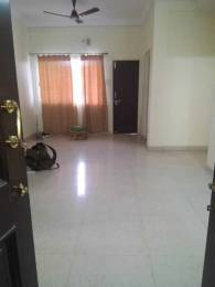 1700 sqft, 3 bhk Apartment in Builder platinum Plaza Napier Town, Jabalpur at Rs. 20000