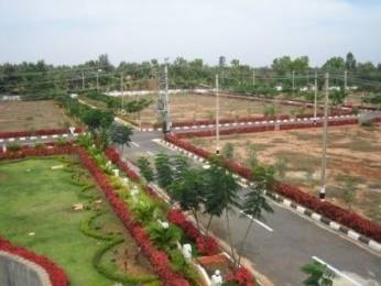 686 sqft, Plot in Builder plot for sale Badsa, Jhajjar at Rs. 56.7800 Lacs