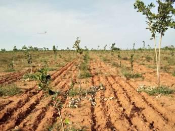 2403 sqft, Plot in Builder Divyasri realters nature green money Choutuppal, Hyderabad at Rs. 8.0100 Lacs