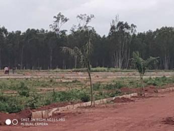 1000 sqft, Plot in Builder MUNESHWARASWAMY GREEN CITY LAYOUT Vidyaranyapura, Bangalore at Rs. 25.0000 Lacs