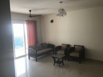 1799 sqft, 3 bhk Apartment in Builder Project Kakkanad, Kochi at Rs. 25000