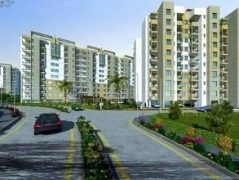 2451 sqft, 4 bhk Apartment in Builder Project Janakpuri, Delhi at Rs. 3.5000 Cr