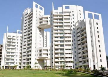 2895 sqft, 3 bhk Apartment in Parsvnath Exotica Sector 53, Gurgaon at Rs. 2.3000 Cr