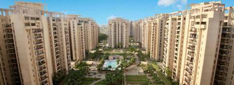 1805 sqft, 3 bhk Apartment in Orchid Petals Sector 49, Gurgaon at Rs. 1.6000 Cr