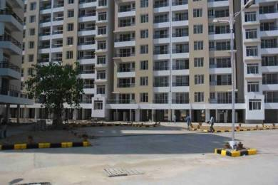 1160 sqft, 2 bhk Apartment in TDI Wellington Heights Sector 117 Mohali, Mohali at Rs. 38.0000 Lacs