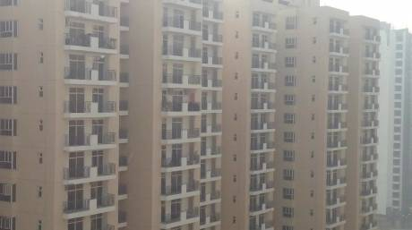 1065 sqft, 2 bhk Apartment in Builder Nirala Aspire Greater Noida West, Greater Noida at Rs. 37.0000 Lacs