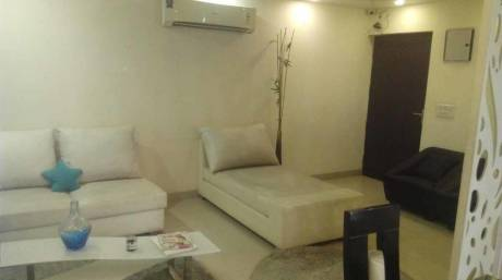 1350 sqft, 3 bhk Apartment in Victory Amara Sector 16 Noida Extension, Greater Noida at Rs. 41.0000 Lacs