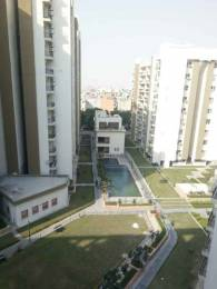 1245 sqft, 2 bhk Apartment in Umang Winter Hills Shanti Park Dwarka, Delhi at Rs. 20000