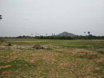 1827 sqft, Plot in Builder Project Yadagirigutta, Hyderabad at Rs. 7.5110 Lacs
