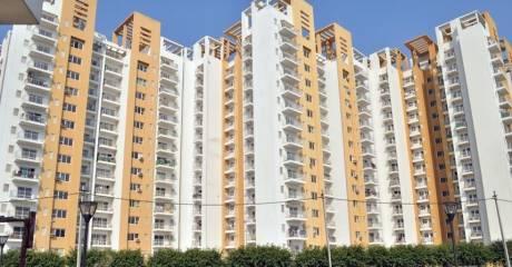2032 sqft, 3 bhk Apartment in BPTP Park Grandeura Sector 82, Faridabad at Rs. 82.0000 Lacs