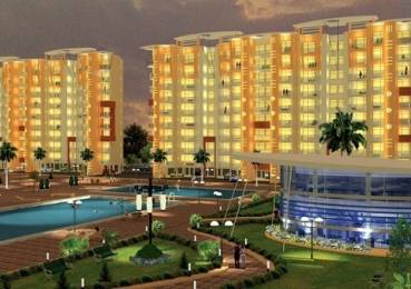 1100 sqft, 2 bhk Apartment in Puri Pratham Sector 84, Faridabad at Rs. 10000