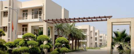1805 sqft, 4 bhk BuilderFloor in RPS Palms Sector 88, Faridabad at Rs. 14000