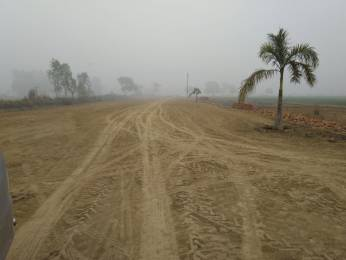 3200 sqft, Plot in Builder Project Sultanpur Road, Lucknow at Rs. 32.0000 Lacs