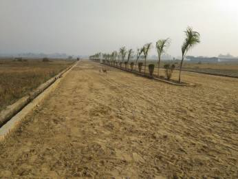 2450 sqft, Plot in Builder Project Sitapur Road, Lucknow at Rs. 20.8250 Lacs