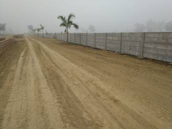 2450 sqft, Plot in Builder Project gossaiganj sultanpur road, Lucknow at Rs. 24.5000 Lacs