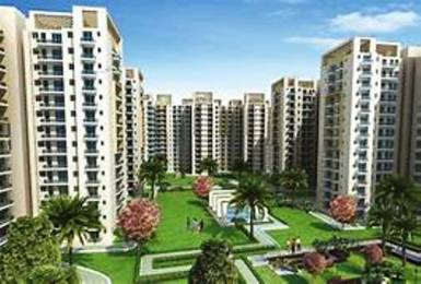 1037 sqft, 2 bhk Apartment in  Capital Greens Phase 1 Sector 3 Bhiwadi, Bhiwadi at Rs. 33.0000 Lacs