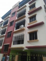 1200 sqft, 3 bhk Apartment in Builder Flat Madurdaha Near Ruby Hospital On EM Bypass, Kolkata at Rs. 16000