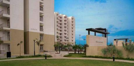 940 sqft, 2 bhk Apartment in MR Shalimar City Pasaunda, Ghaziabad at Rs. 8500