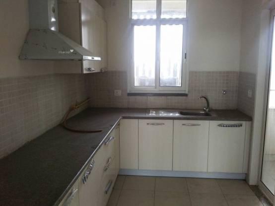 1480 sqft, 3 bhk Apartment in Samiah Vrinda City Phi, Greater Noida at Rs. 8000