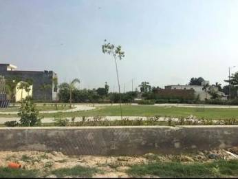 900 sqft, Plot in Builder Project Kharar Mohali, Chandigarh at Rs. 15.9000 Lacs